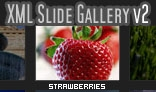 XML Slide Gallery v2 with Background Music