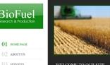 Beofuel Company Webite Template