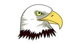 Eagle Vector Graphic