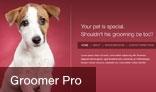Groomer Pro