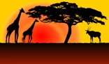 Animated Background with African fauna and flora