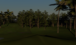 Mega Pack Low Poly Trees