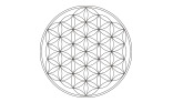 Star Tetrahedron