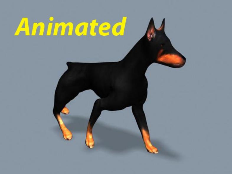 An animated Doberman dog walking FBX format for Maya, Max, Softimage, etc