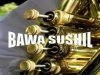 bawa sushil AUTHENTIC