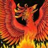 fireberd904