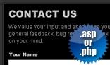 Flash .asp / .php Contact Form w/ Auto-responder