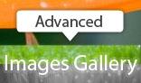 Fullscreen Advanced Images Gallery