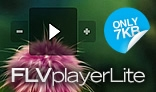 FLV player Lite
