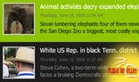 2009 Loop News Widget