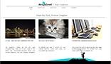 Flash Full XML Website Template