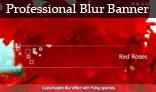 Professional Blur Banner