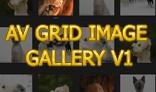 AV Grid Image Gallery V1