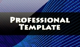 Professional Template