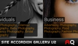 Site Accordion Gallery V2