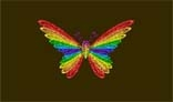 ColourFull Butterfly