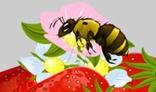 Bee Sucking flower