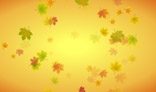 Swirl of autumn leaves animation. 2Kb only. AS2.0
