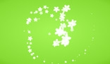 Swirl of flowers. Flash animation. 1Kb only. AS2.0