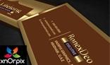 Luxury Business Card