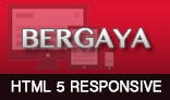 Bergaya - Responsive HTML Template For Any Business