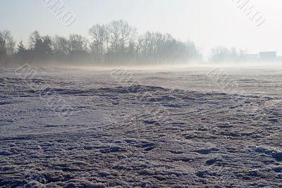 Frosty, spring morning