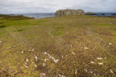arid island coastline hdr