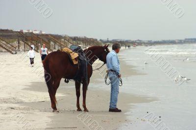 horse and rider at beach
