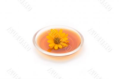 Herbal drink with flower isolated on white #1