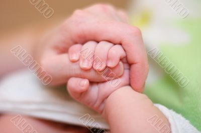 Baby hold mother finger on your hand