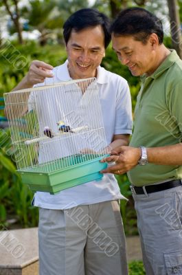 Studying Birds in Cage