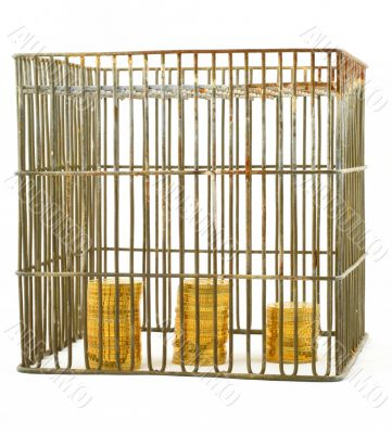 banking - coins in cage on white #3