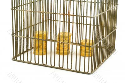 banking - coins in cage on white