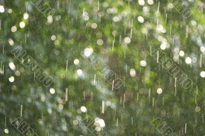 drops of a rain illuminated by a sunlight