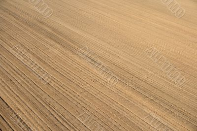 Ploughed land ready for cultivation