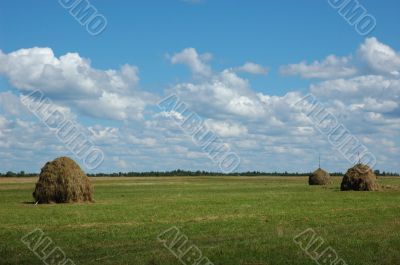 Three hayricks on the meadow