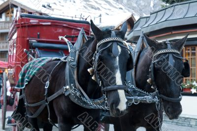 Old-fashioned Horse carriage.