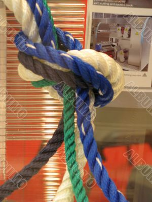 United colours knot