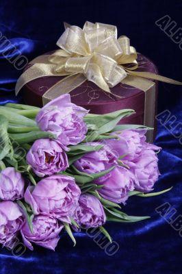 Gift. Present. Violet tulips, purple box