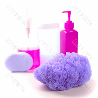 sponge, soap and body lotion