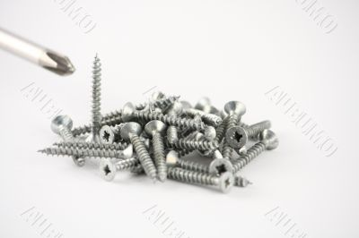 A bunch of Screws And Screwdriver
