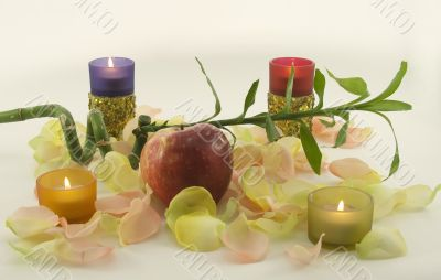 Bamboo and big red fresh apple with aromatic rose leave in rays