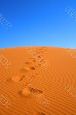 walking on Sahara desert