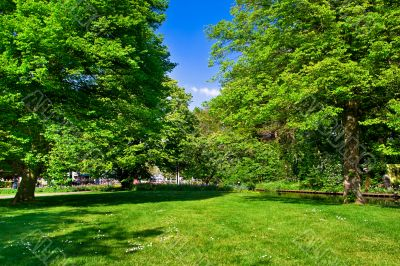 Colourful park in spring time.