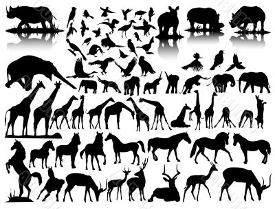vector silhouettes of wildlife