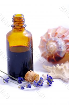 Herbal medicine with herbs and marine animals