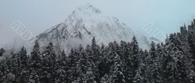 Caucasus mountains, winter forest and white clouds