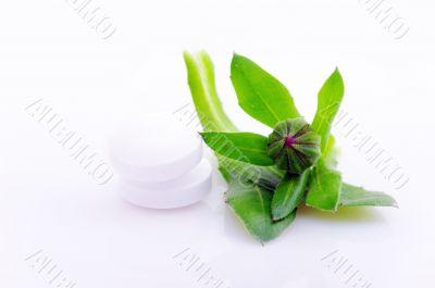 white pills , natural medicine concept