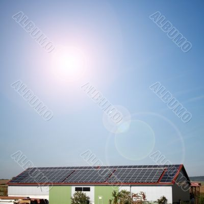 solar plants in the house during sunny weather