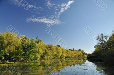 Autumn by river